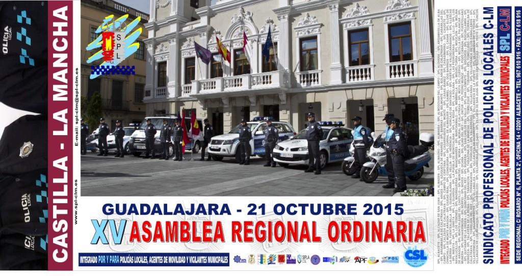 Pancarta Asamblea 2015 3
